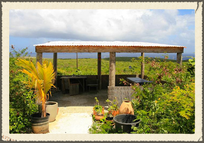 GRACIAS CURACAO At our two and a half acre property we offer you the opportunity to go back to basics. You will go to bed with an oil lamp. In the early morning, the birds will wake you up by singing their love songs. You can watch the sunrise from your own block hut with an ocean view. http://www.gracias-curacao.com/en