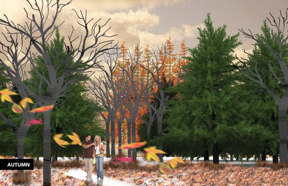 trees-09.jpg