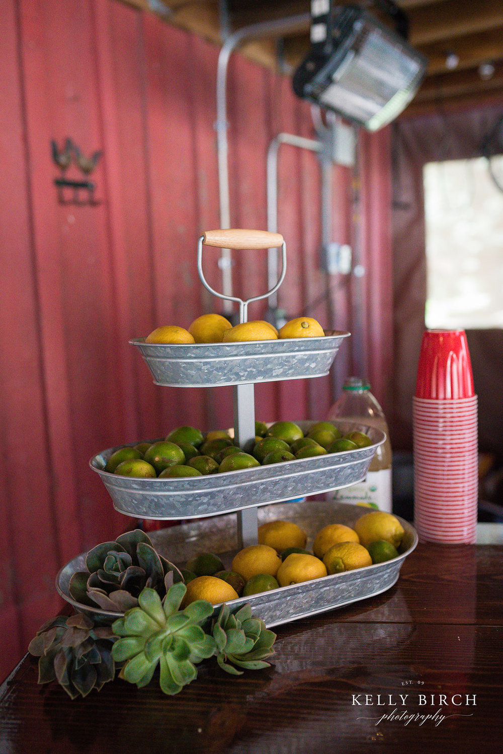 Wedding Bar decor - lemons and limes and succulents in a tin container
