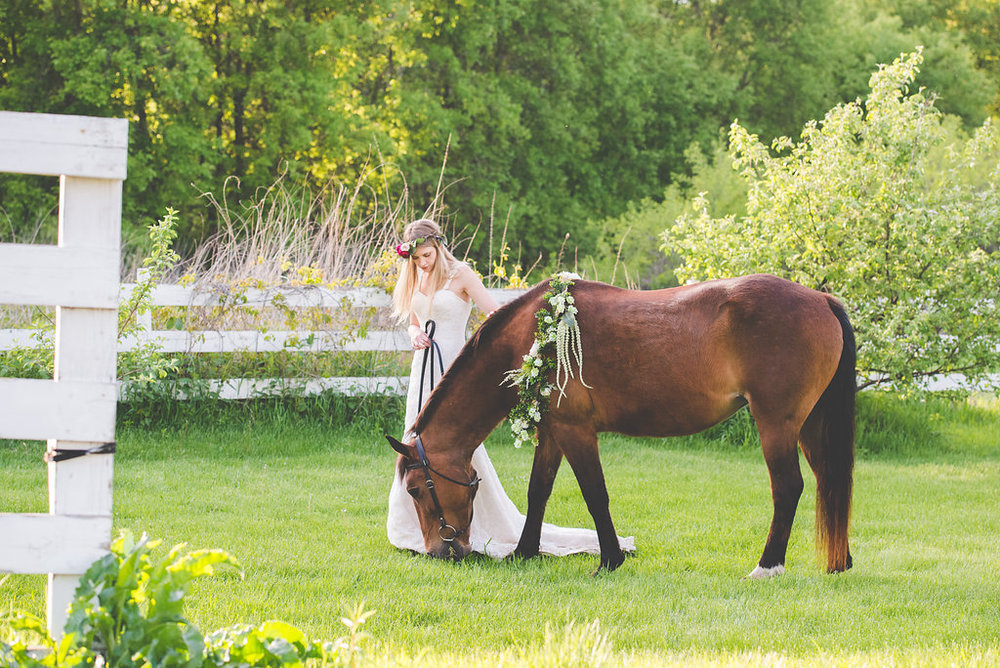 a wedding with a horse and a floral crown | Kelly Birch Photography