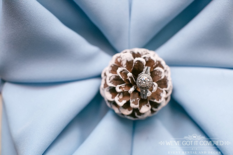 light blue rose fold napkin with white painted pine cone and wedding ring | We've Got it Covered