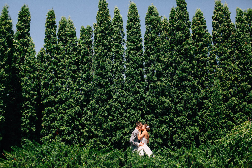 Mark Fierst Minneapolis Wedding Photographer | Sixpence Standard blog post | tree backdrop