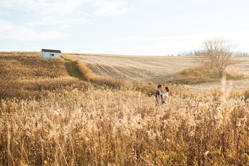Alyssa Lee Minneapolis Wedding Photographer | Sixpence Standard wedding blog | bride and groom kissing in a fall field