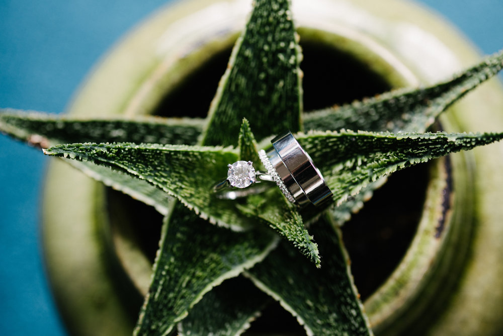 Succulent ring detail shot | Dillinger Studios Minneapolis Photographer | Mexican American fusion wedding | Sixpence Events & Planning Minnesota wedding planner .jpg