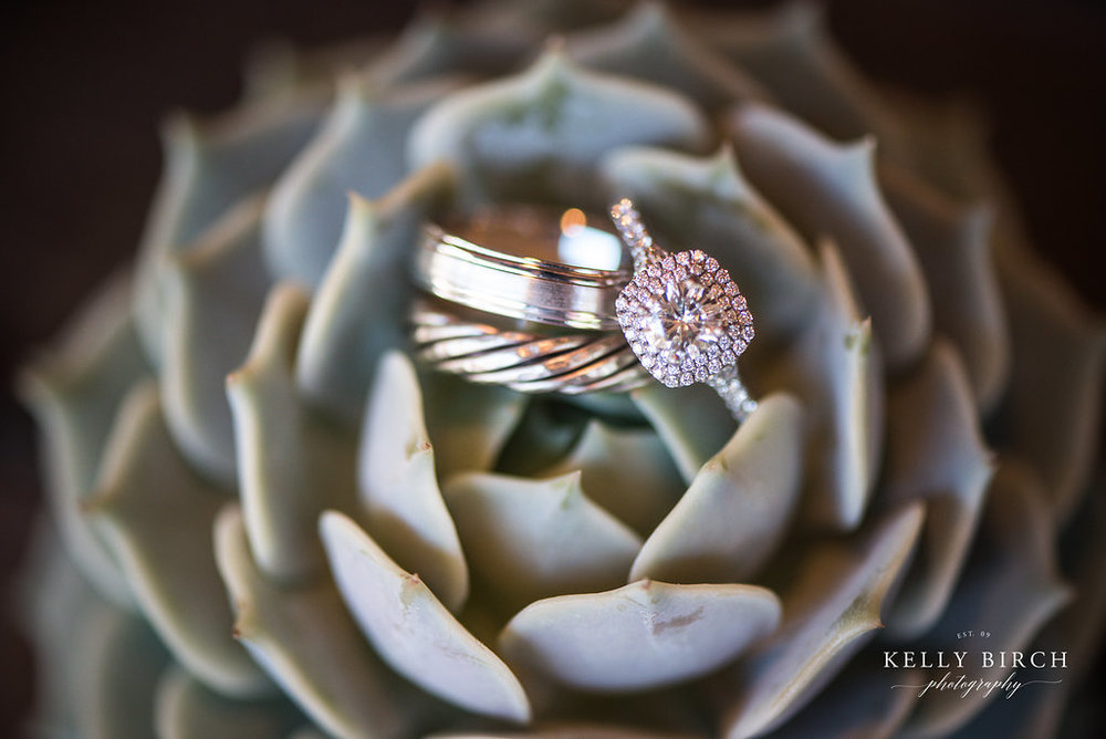 succulent detail image with ring | Kelly Birch Photography | Sixpence Events Minneapolis day of wedding coordinator