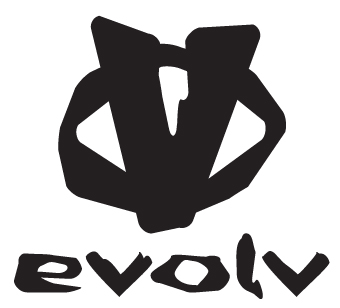 evolv 2010 logo.jpg