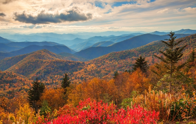 North Carolina Blue Ridge Mountains.  Photo Credit:  David Knight