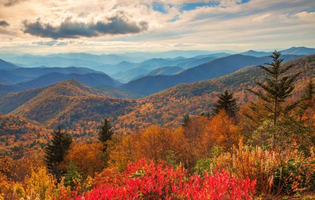 North Carolina Blue Ridge Mountains. Photo Credit:  David Knight