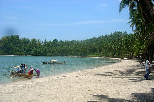 Panapukan Beach on Samar (Wikipedia)