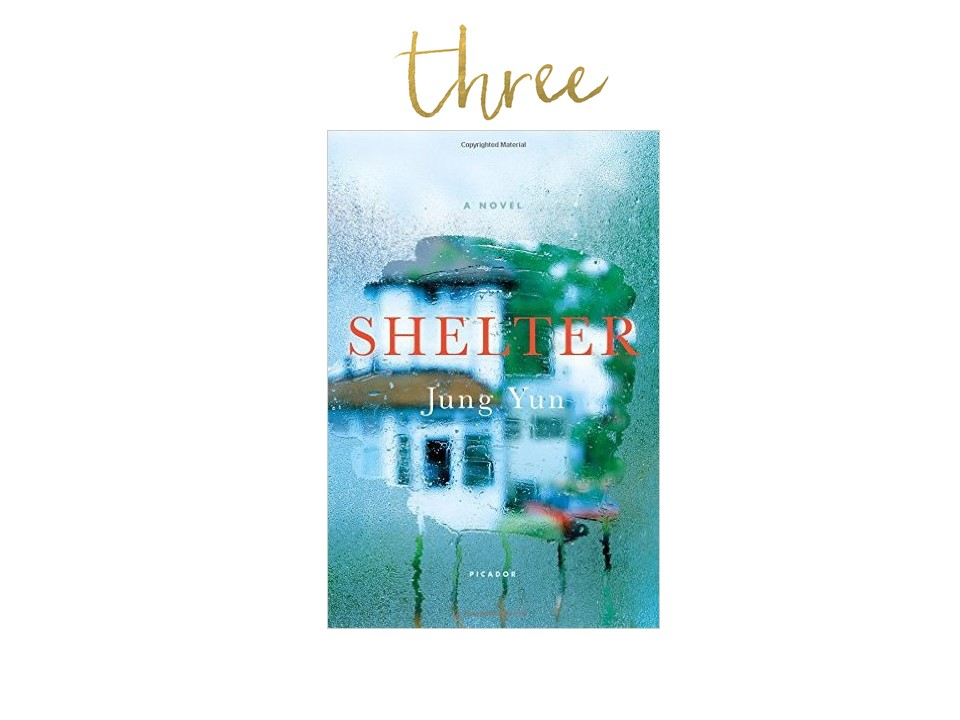 Shelter Novel      FIND YOURSELF ENTANGLED IN THE STORY OF A FAMILY STRUGGLING WITH MONEY AND MARRIAGE AND SECRETS!