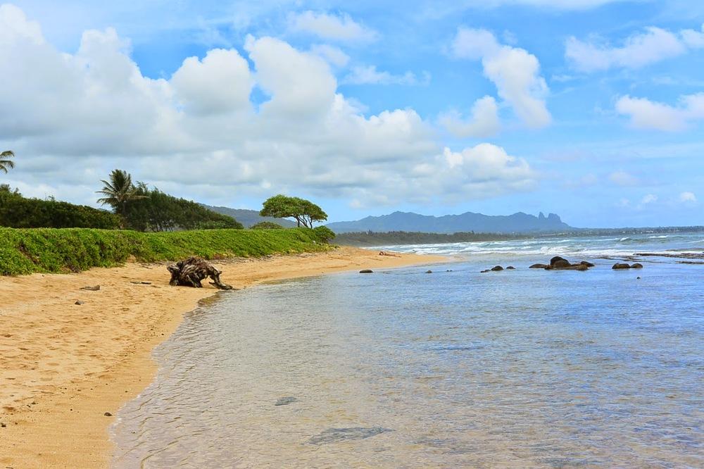 Kauai1.jpg