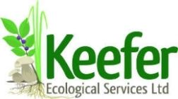 keefer_logo_reduced.jpg