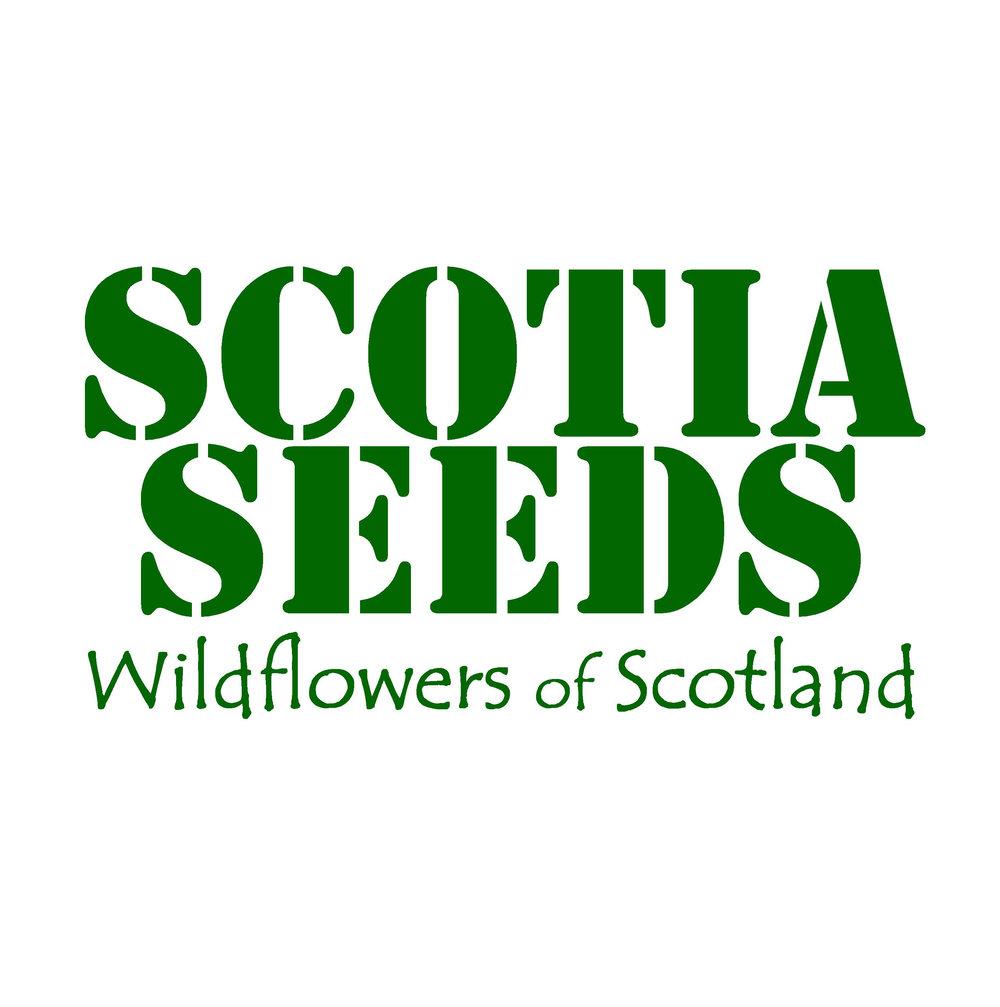 Scotia Seed