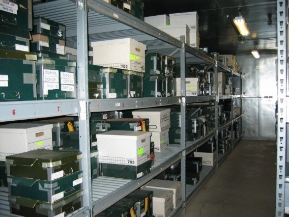 Cold storage room at the BSE.