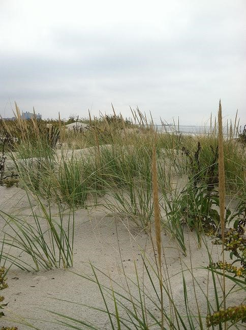 Rockaway Beach pre-Sandy