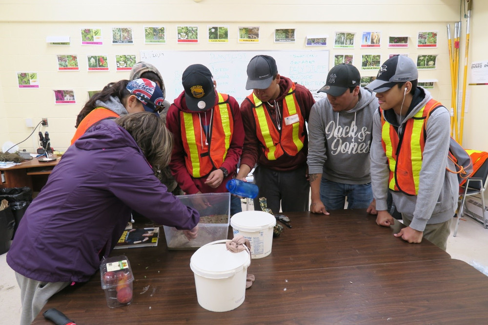 Figure 6 . Attawapiskat First nation youth seed collectors are learning about alternative propagation strategies for a native species with low seed yields.