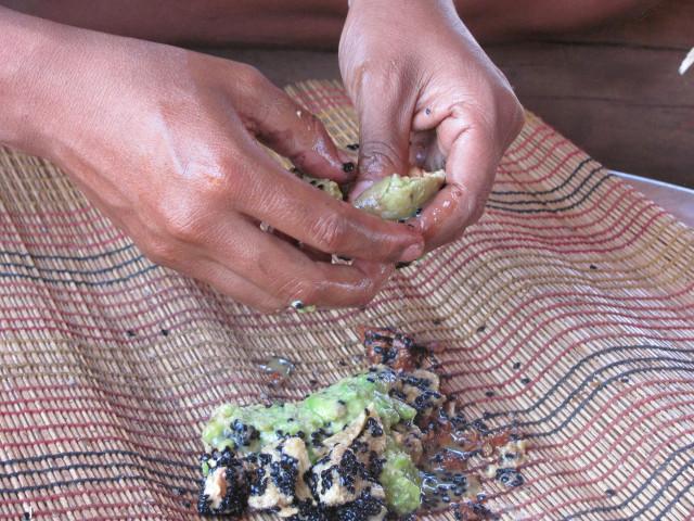 Processing Solanum crinitum seeds - Photo_ Danilo Urzedo.jpg