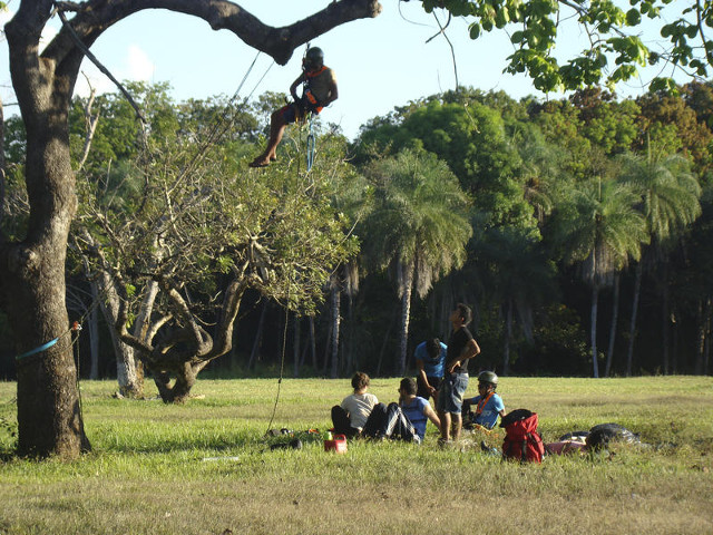 Seed collection workshop at the Xingu Indigenous Territory - Photo_ Dannyel Sá .jpg