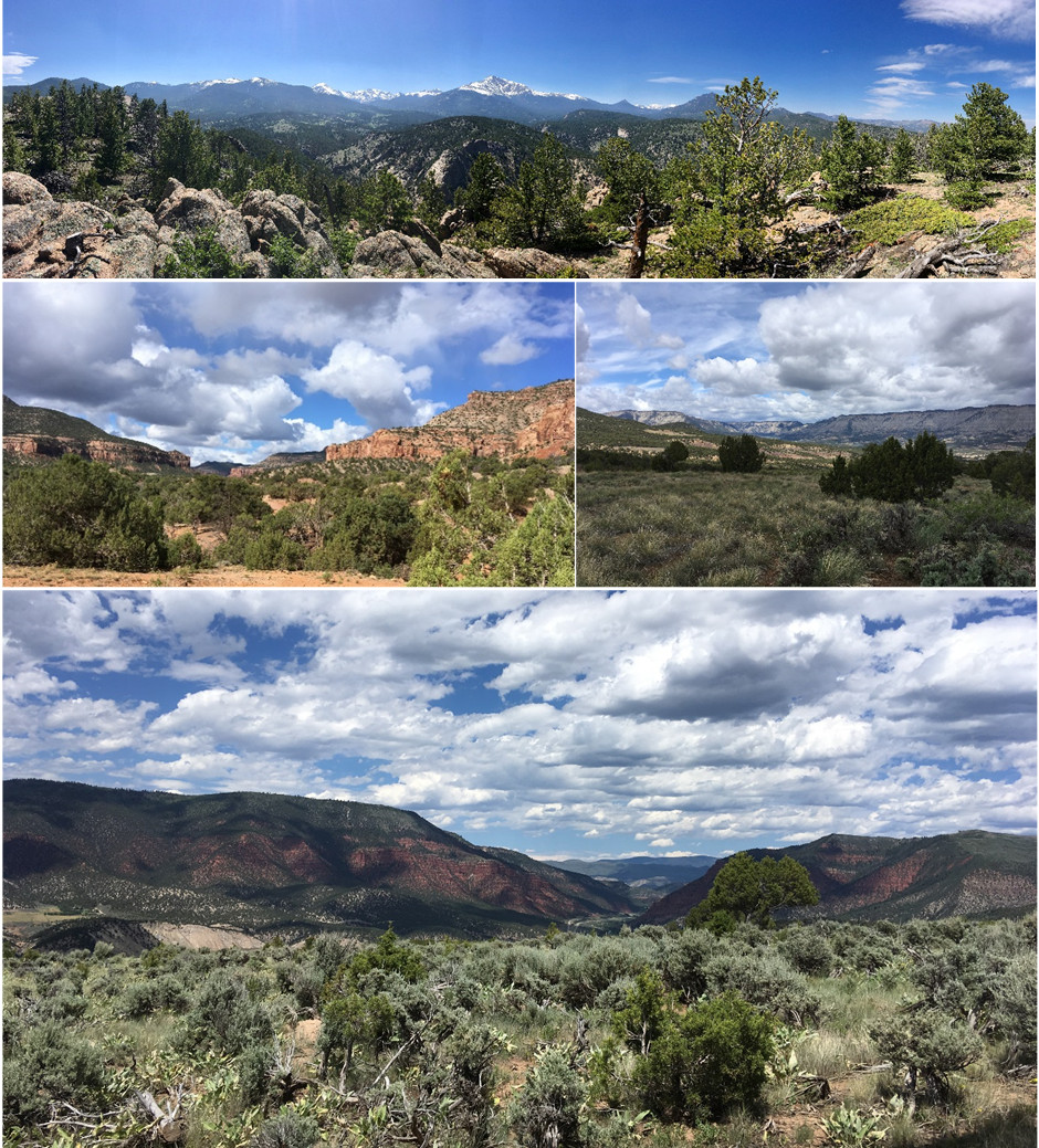 Figure 1. Ecosystems found throughout Colorado. Top: Montane forest; Middle: Semi-desert shrublands; Bottom: Sagebrush shrubland.