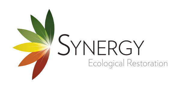 Synergy Ecological Restoration