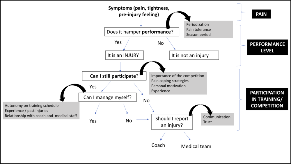 Based on interviews analysis, injury perception can be modified by personal and external factors (grey boxes), which influences the core constructs of the sports injury definition (IE, pain, performance level, and sports participation)