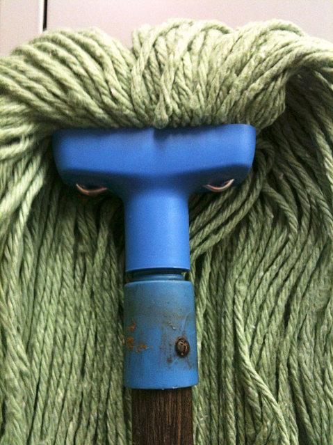 grumpy mop.jpg