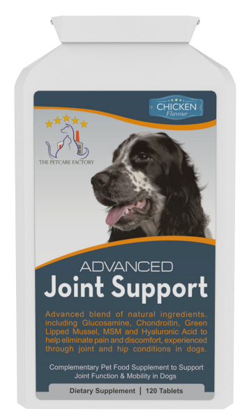 dog-joint-supplement.jpg