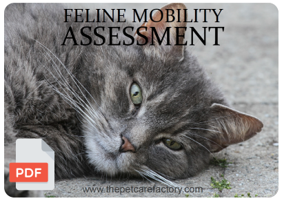 feline_assessment.png