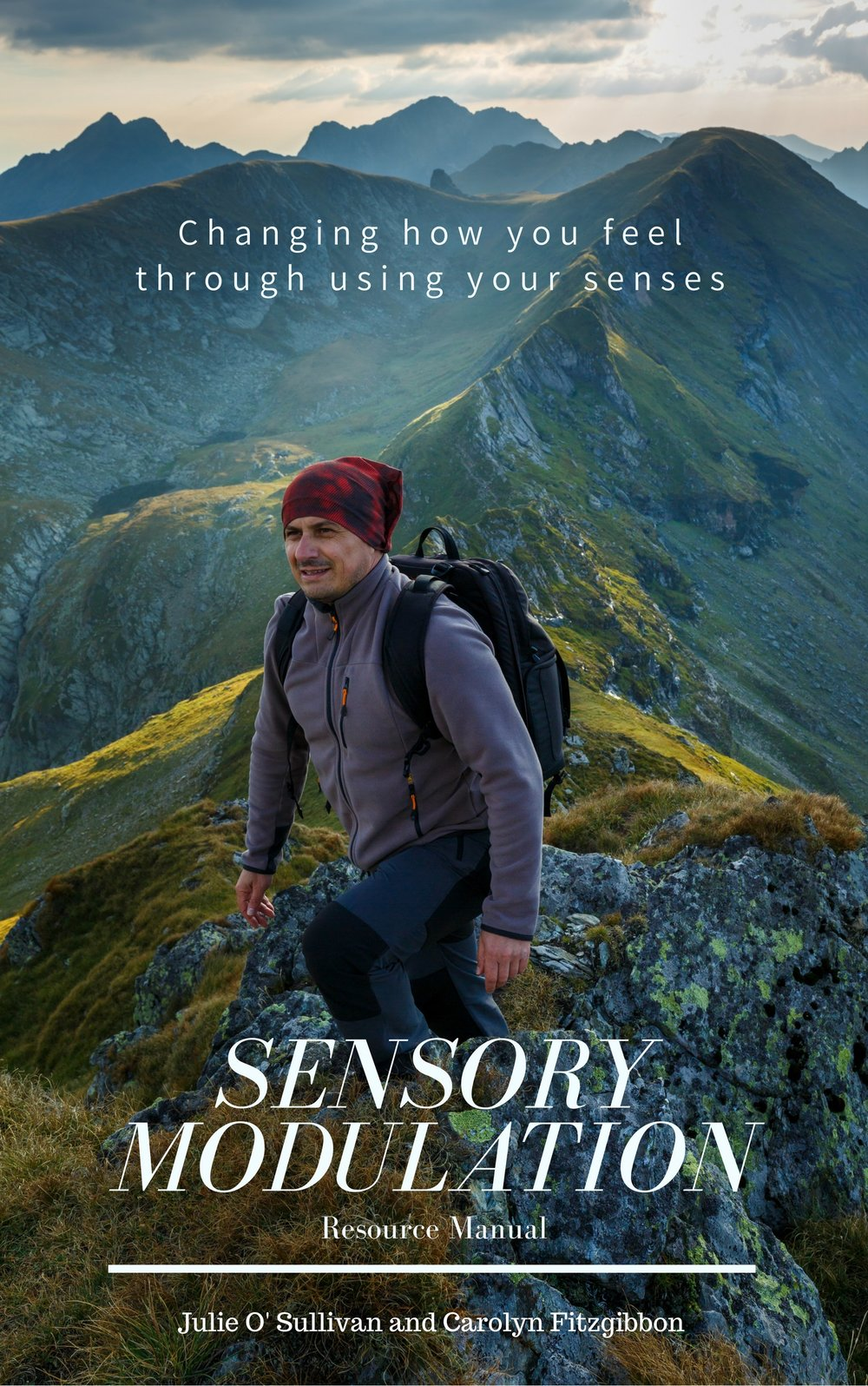 Sensory Modulation Resource Manual