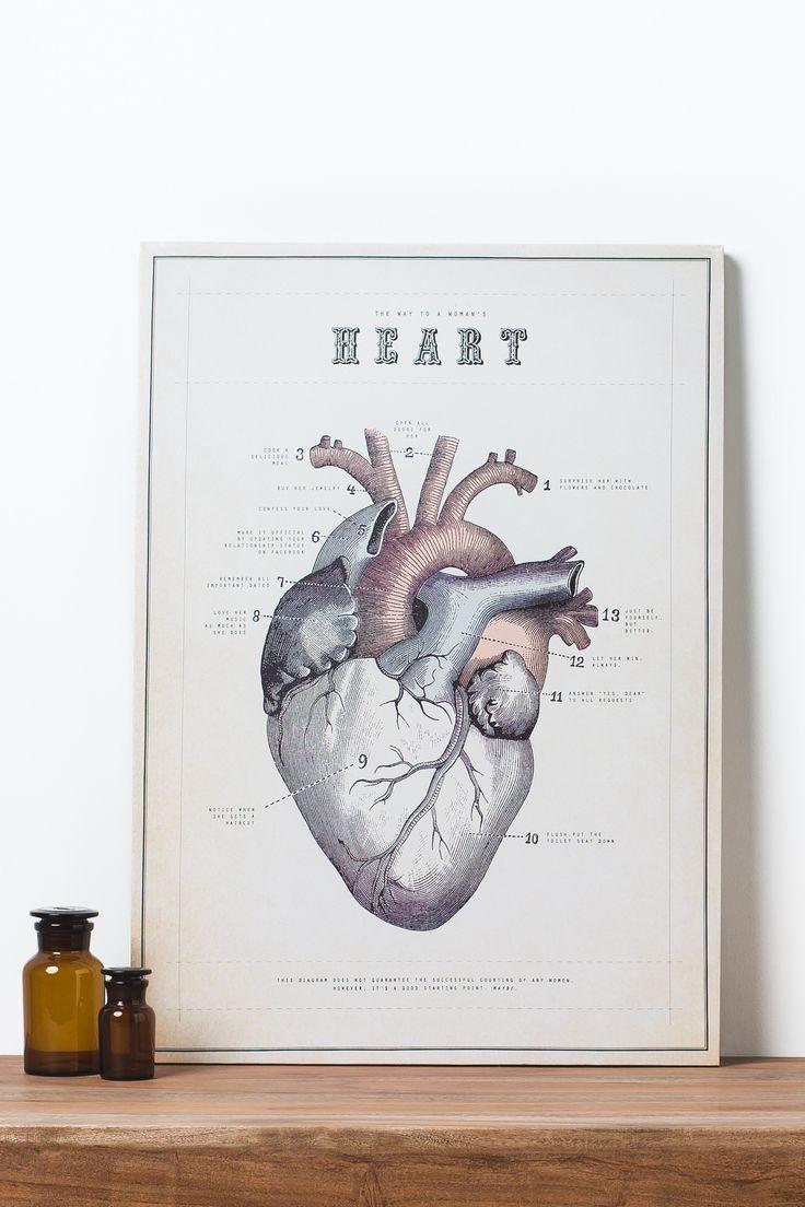 anatmoical heart canvas.jpg