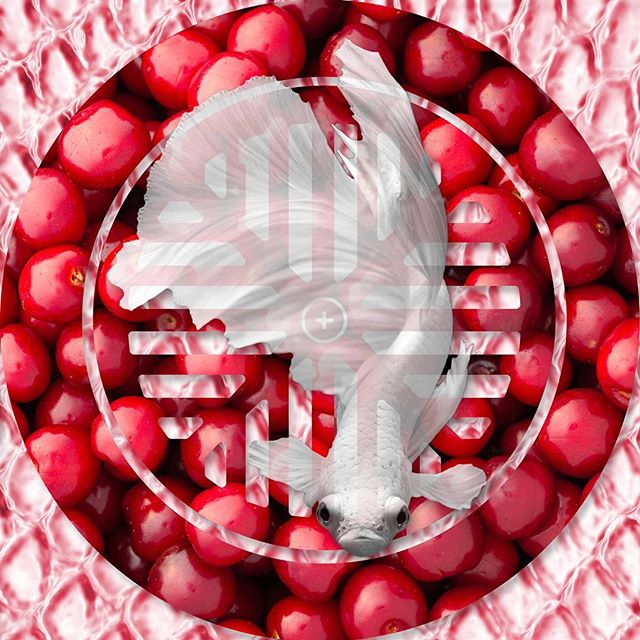 Cherries: A new work that's part of the Ecstatic Assemble Collection. Prints available at SaatchArt.com #art #artistsoninstagram #pictureoftheday #artgallery #photography #photoshop #digitalart #collage #conceptualart #phillyart #rexindustries #highfructose #dailyart #emergingartist #taxcollection #fashionlovers  #alexandermcqueen
