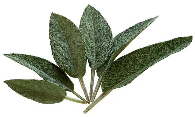 what does sage taste like