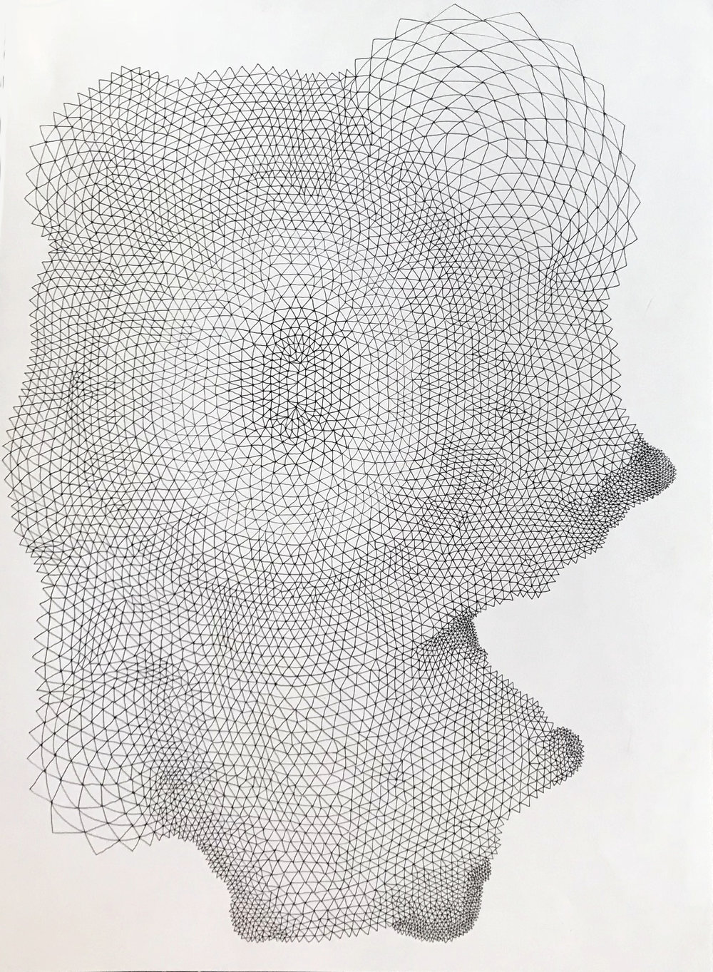 Fragogna_Skin_1_Ink on Paper_16 x 12 inches.jpg