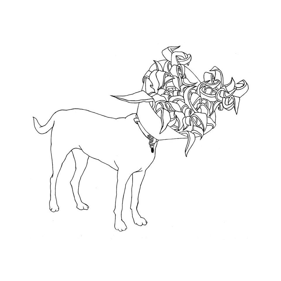 Hegardt_Bjorn_ 02_Dog collar (2009) _ink on paper_30x30 cm_12 x 12 inches_framed.jpg