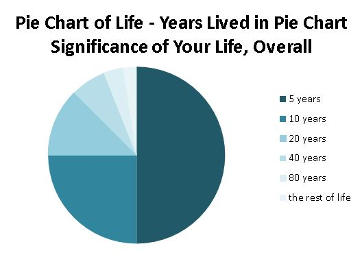 Pie Chart of Life - How your brain comprehends time, significance and speed
