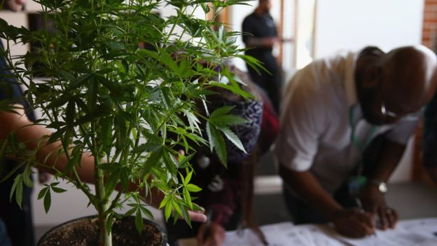 A man fills out a job application at Colorado's first cannabis job fair.