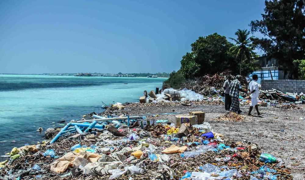 A rubbish truck worth of waste ends up in the oceans every minute.