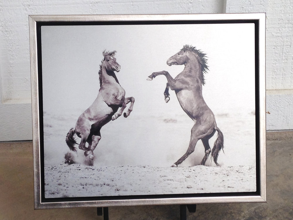"Kimmerlee Curyl's ""Great Divide Two"" Metal Sublimation Print framed in a silver floater frame."