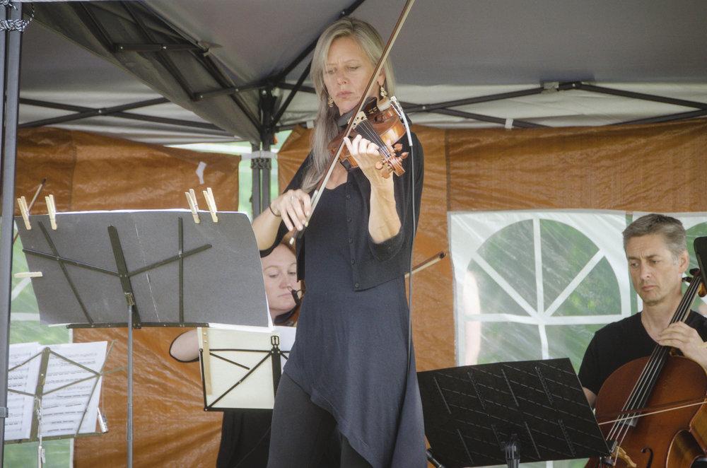 f2b violin.jpg