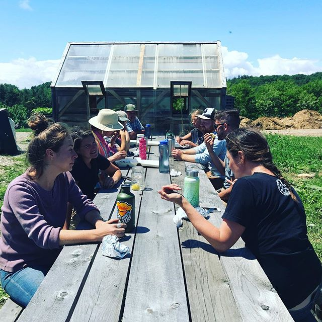 Team lunch @philoridgefarm thx sooooo much to our market garden and livestock crew!!! #workhardeathard