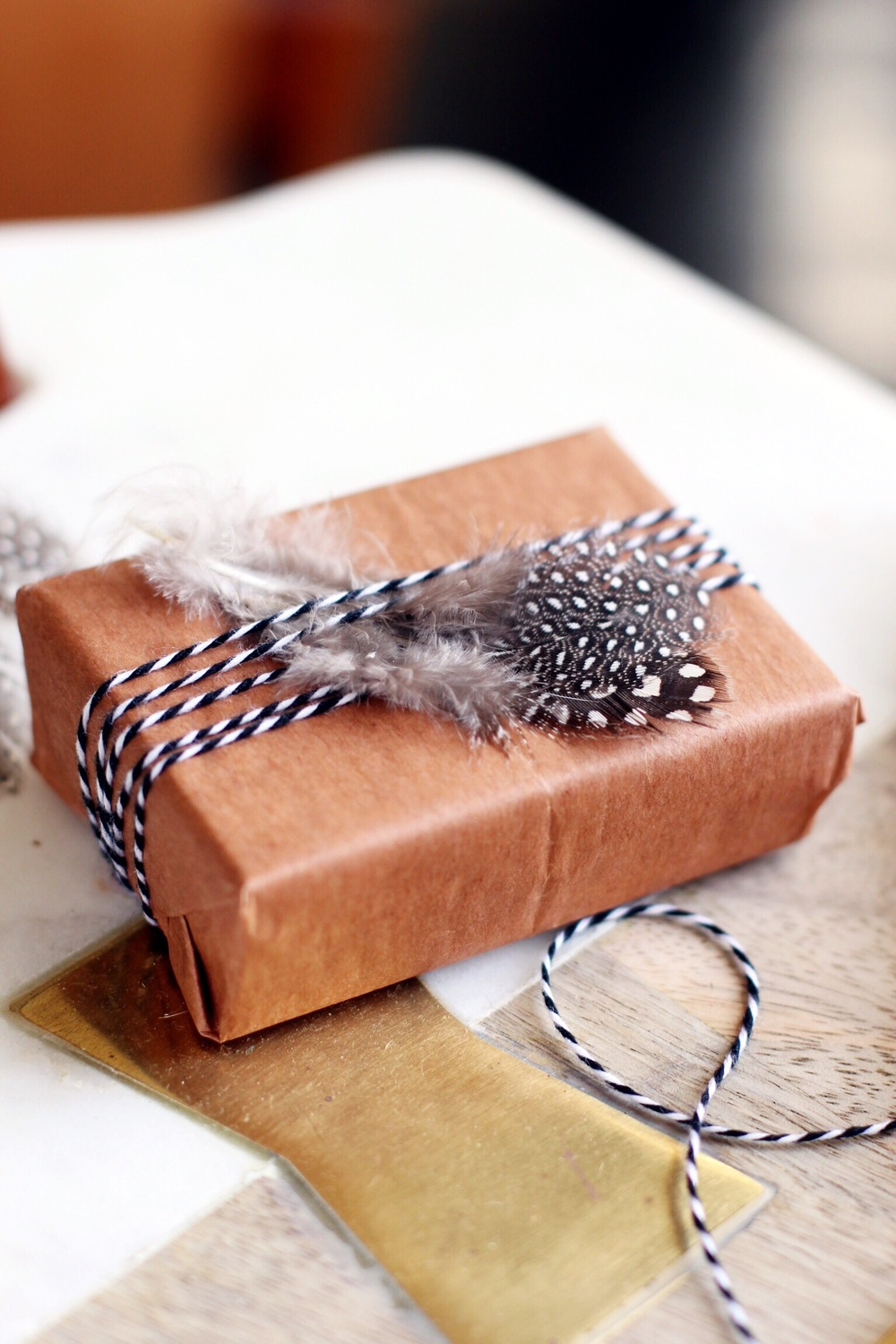 Tiny feathered packages - The Pastiche