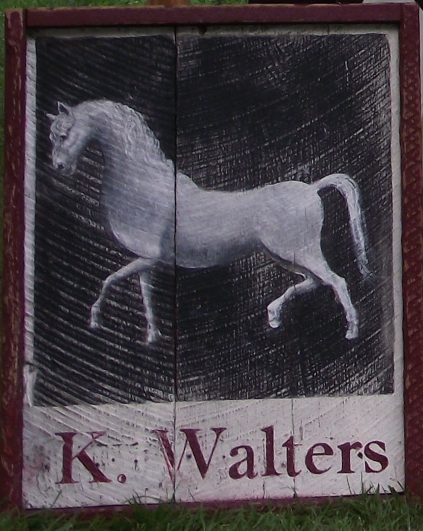 K Walters - White Horse