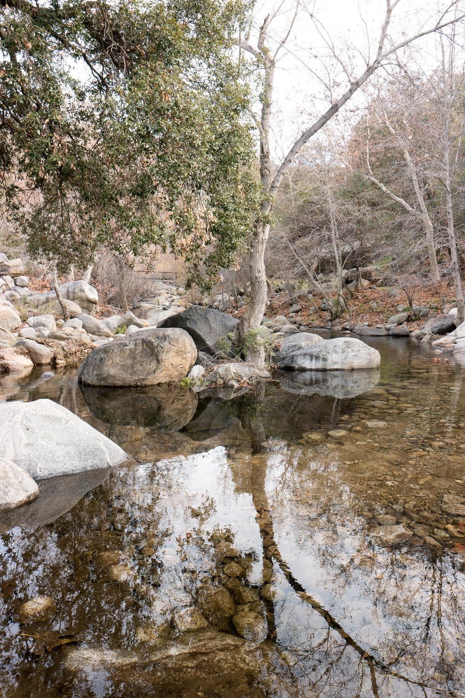 Wasim Muklashy Photography_Three Rivers Ranch_Around_22.jpg