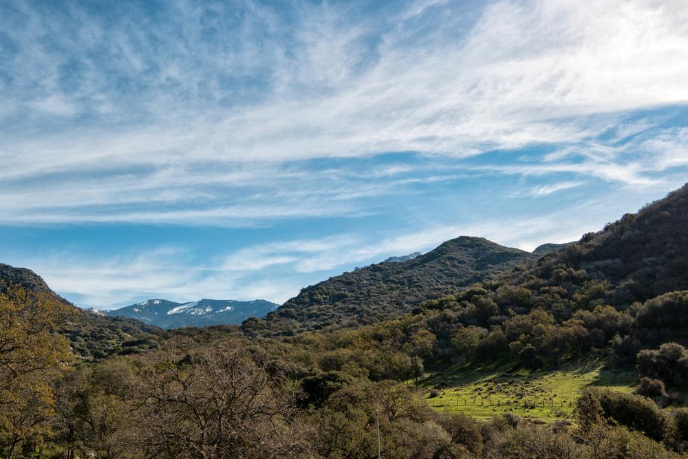Wasim Muklashy Photography_Three Rivers Ranch_Around_05.jpg