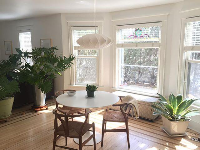 No filter needed. My new clients have such great taste ▫️◽️🌵 . . . . #midcenturymodern #interiordesign #minneapolis #designer #danishdesign #nofilter #naturallight #vintage #decor #style
