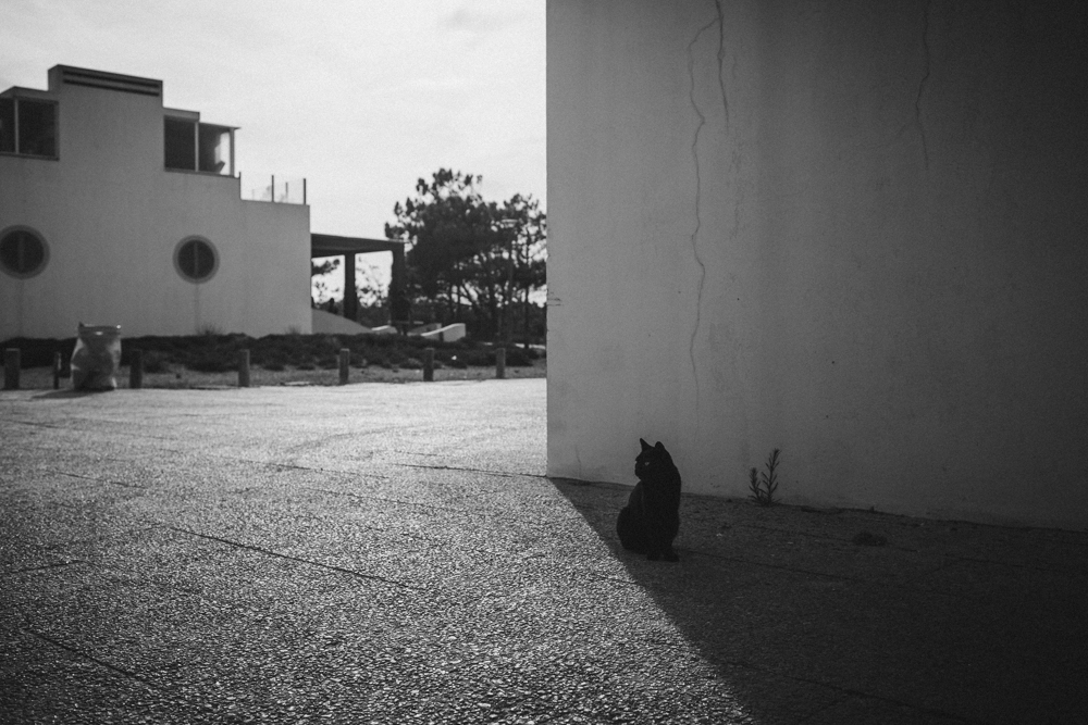 Lilyandlukas-Portugal-07.jpg