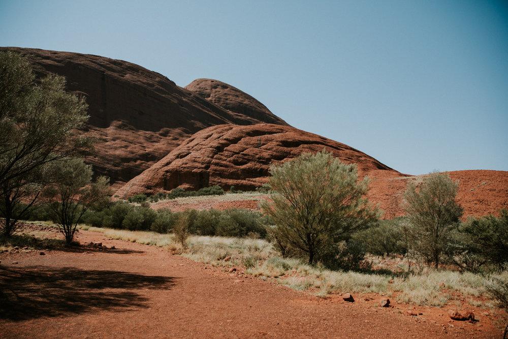 Outback(18von211).jpg