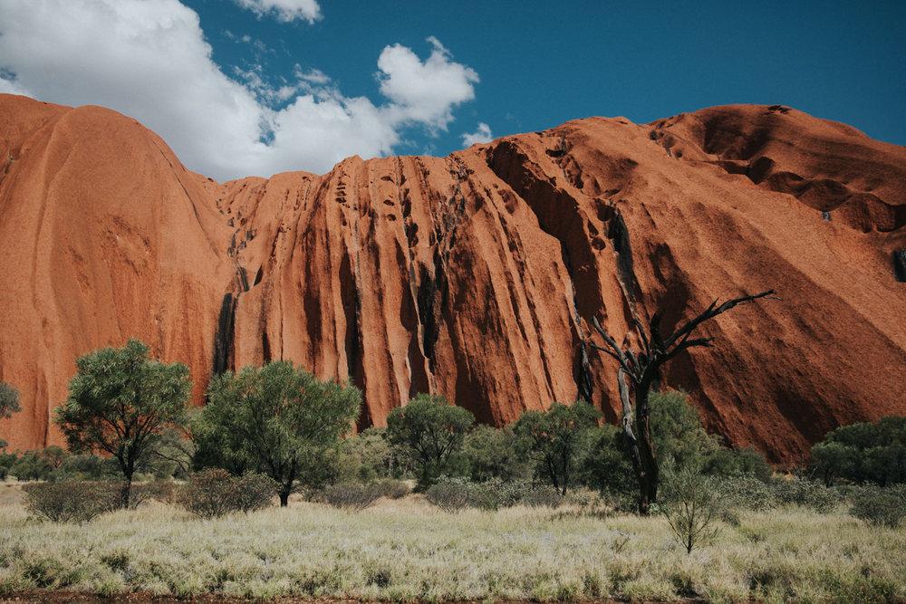 Outback(72von211).jpg