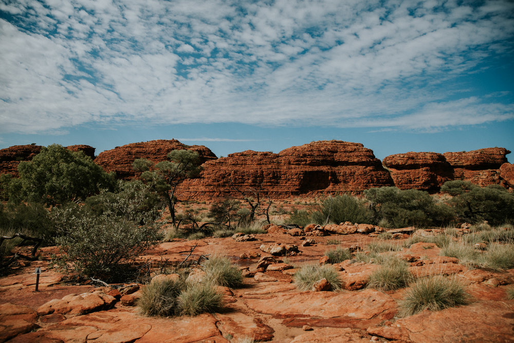 Outback(125von211).jpg