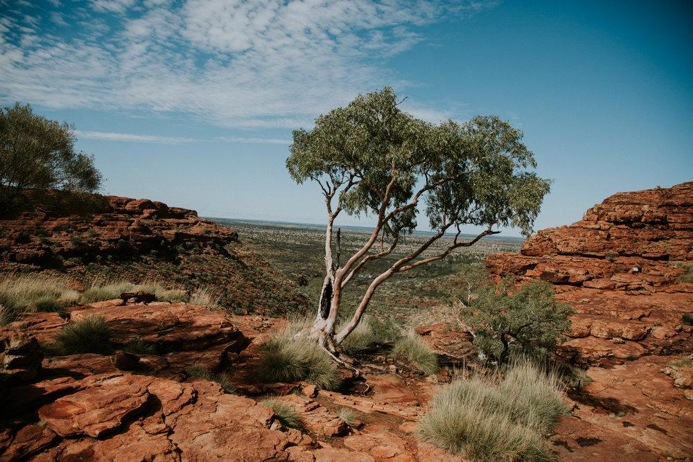 Outback(127von211).jpg